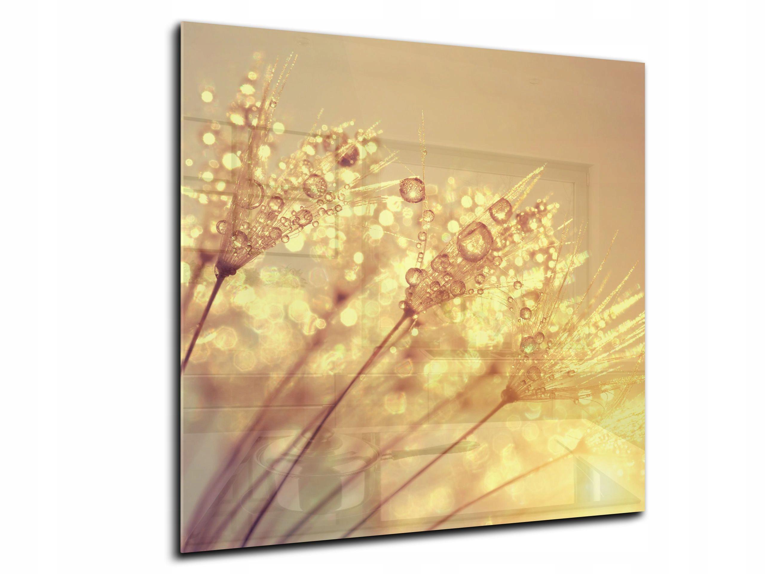 dekor sklenený panel žhavenie 55x55 HD púpava
