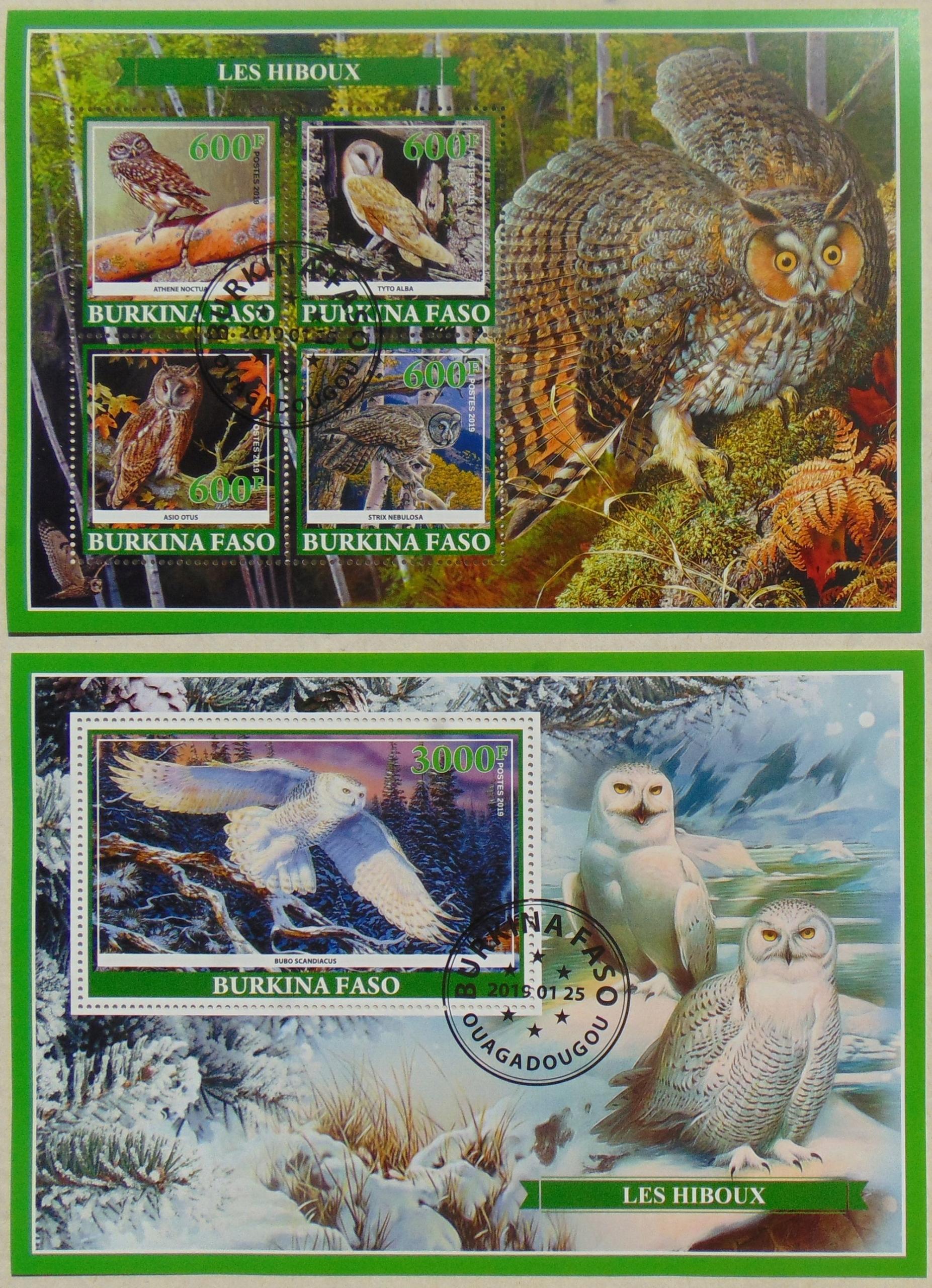 Купить Owls birds owl tawny owl лист + блок # 03252a-b на Otpravka - цены и фото - доставка из Польши и стран Европы в Украину.