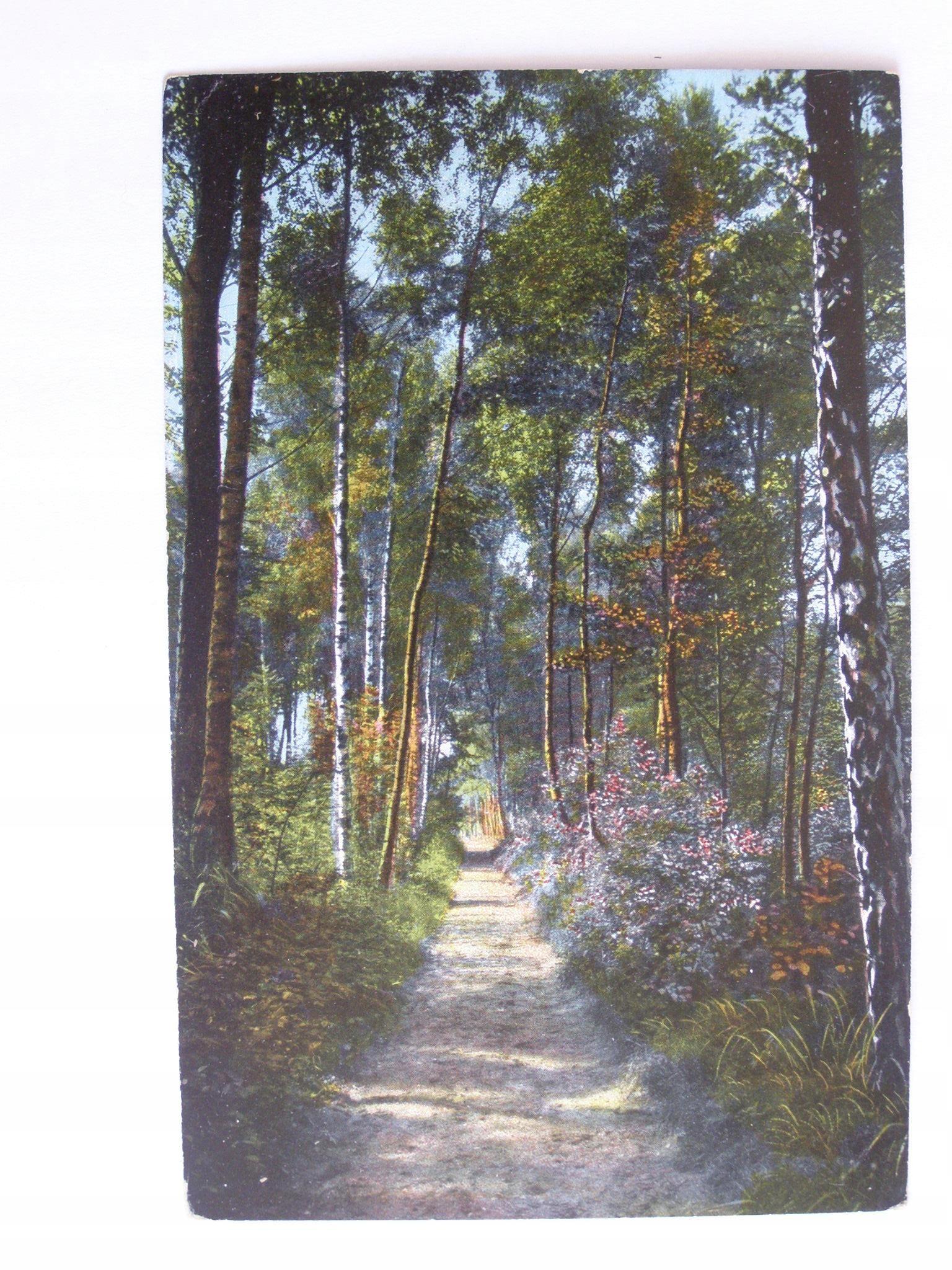 Mielno Grossmoellen Koszalin promenada 1921