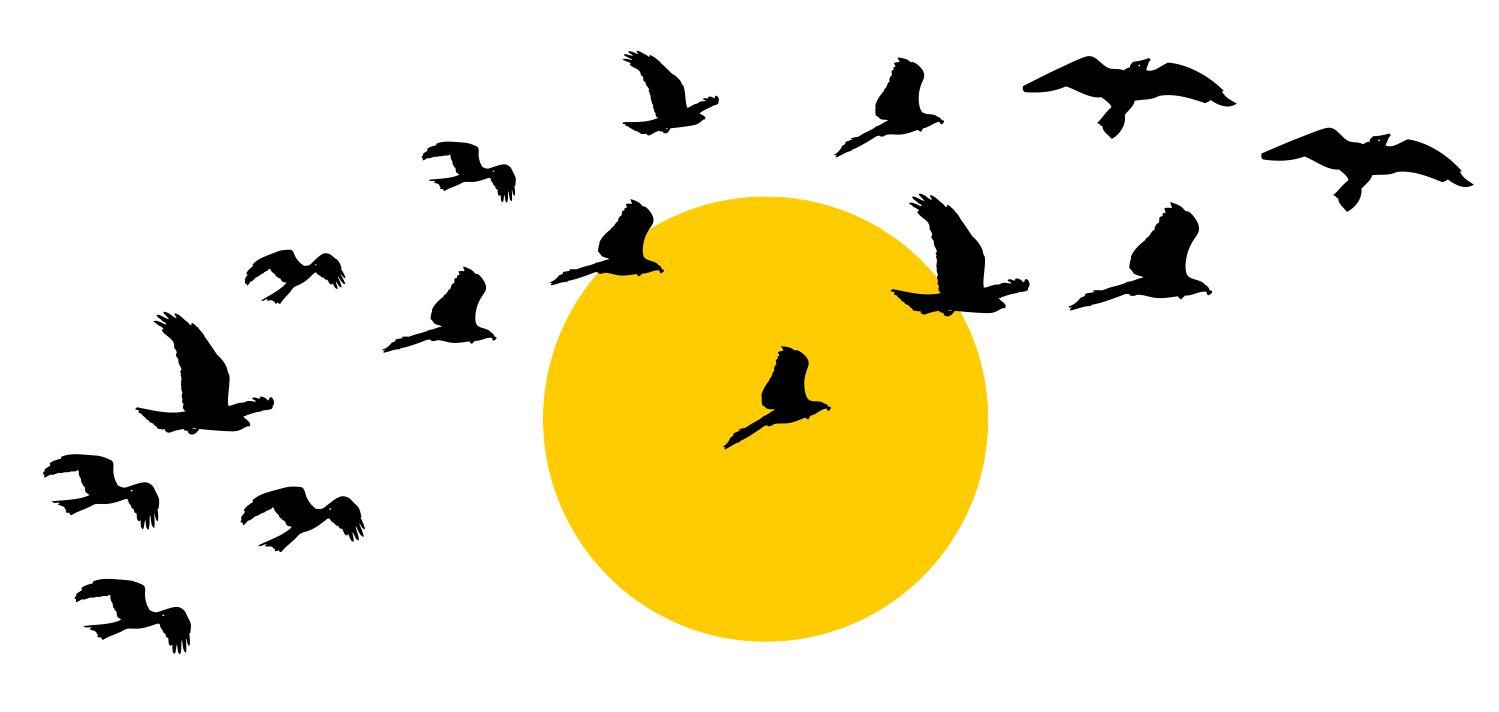 Samolepky nálepka na stenu nálepka - vtáky slnko
