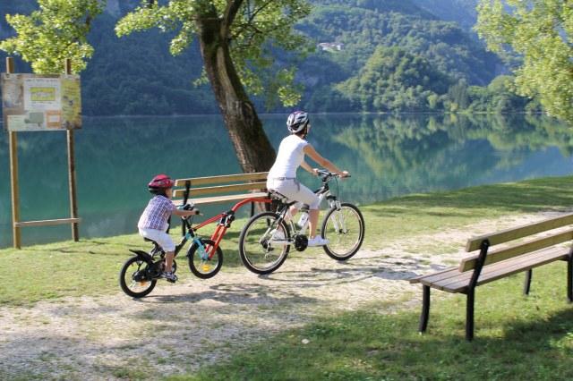 Hol holownik rowerowy roweru dziecka Trail Angel Cechy dodatkowe zaczep do roweru