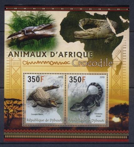 KROKODYLE gady Fauna afrykańska Djibouti #DJI1316