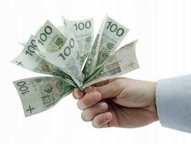 Купить ФОТОГРАФИЯ - ЭКРАН 22 '- КАМЕРА С ЗЕЛЕНЫМ ЭКРАНОМ 1300D на Otpravka - цены и фото - доставка из Польши и стран Европы в Украину.