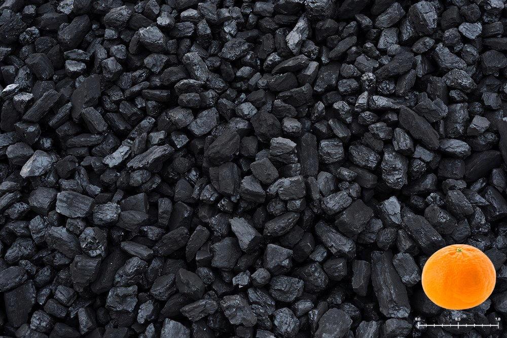 уголь орех в барнауле фото корее можно