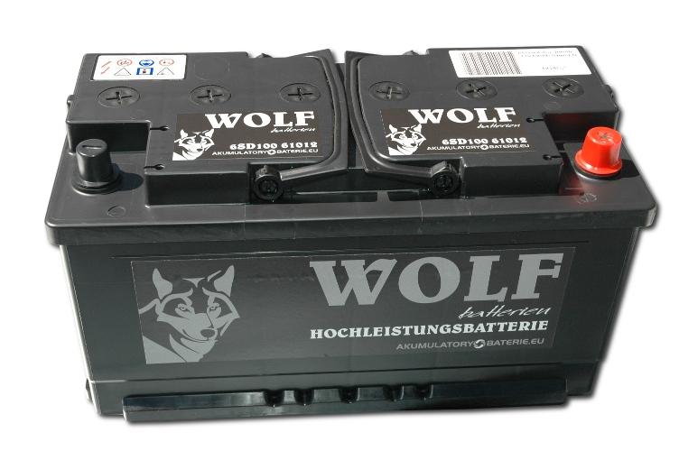 аккумулятор 12v 110ah p+ 1000a sae аккумуляторы wolf