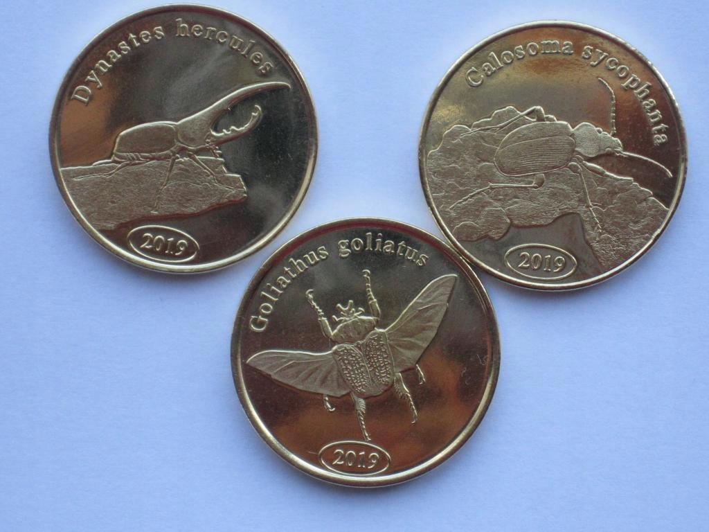 SUMATRA zestaw 3 żuków III seria
