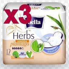 Podpaski Bella Herbs babka lancetowata 12x3=36szt