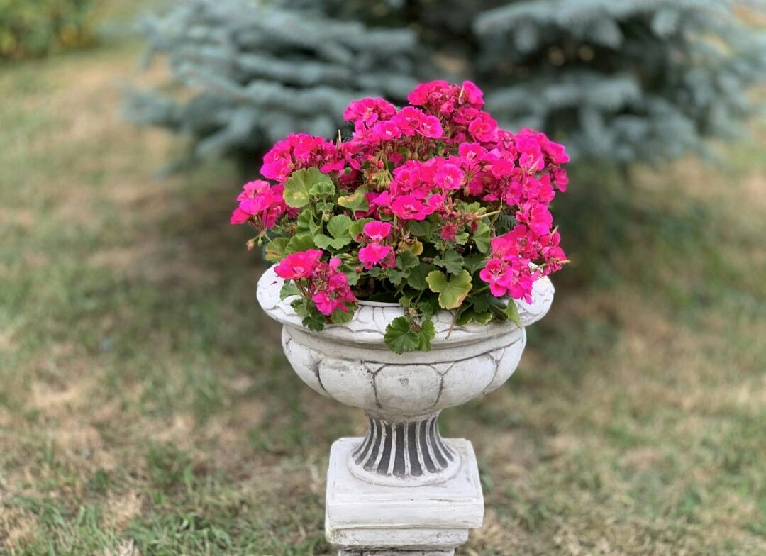 Kvetináč tvar konkrétne od Výrobcu