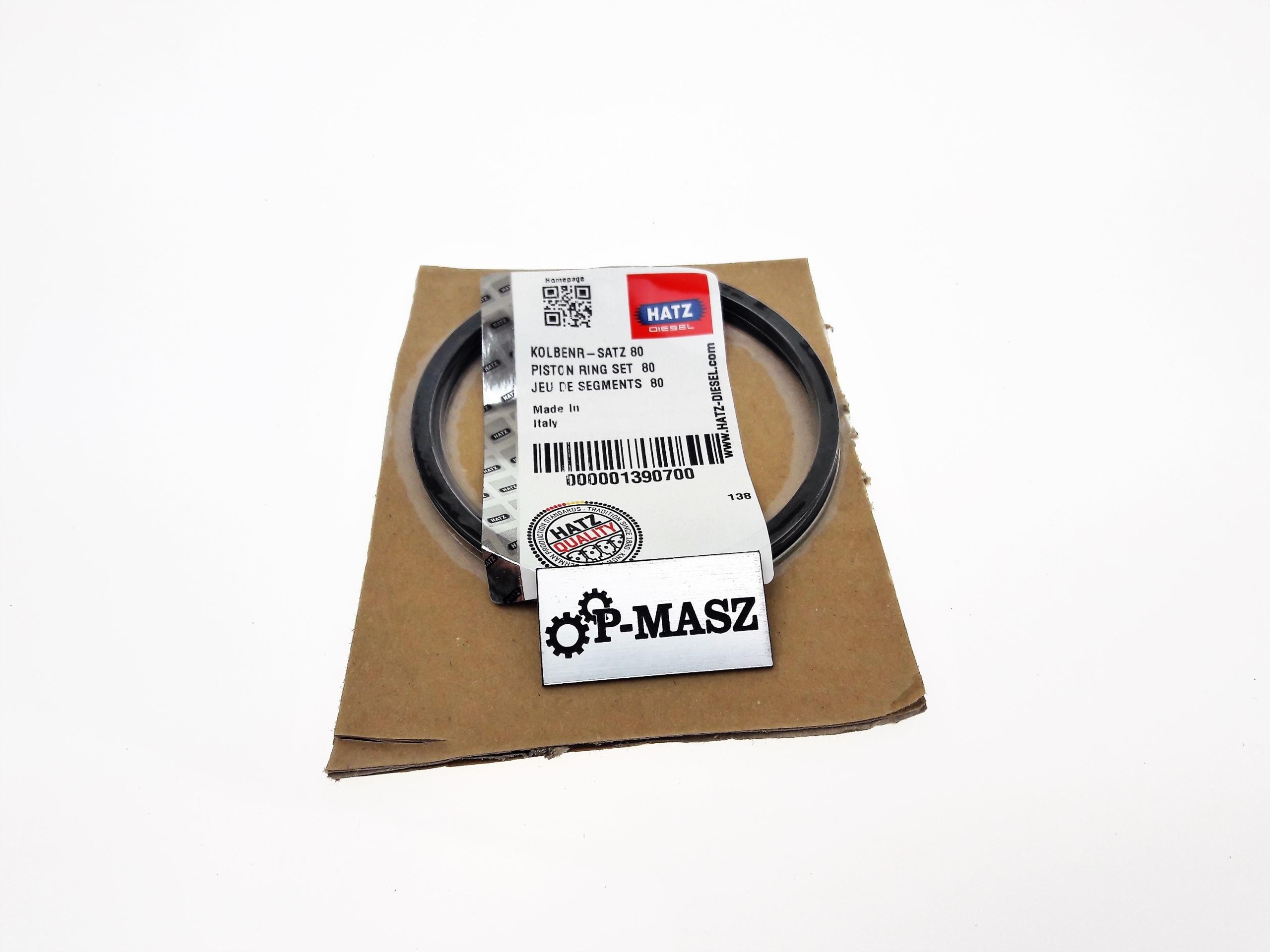 Кольца Hatz STD 1B30 01390700