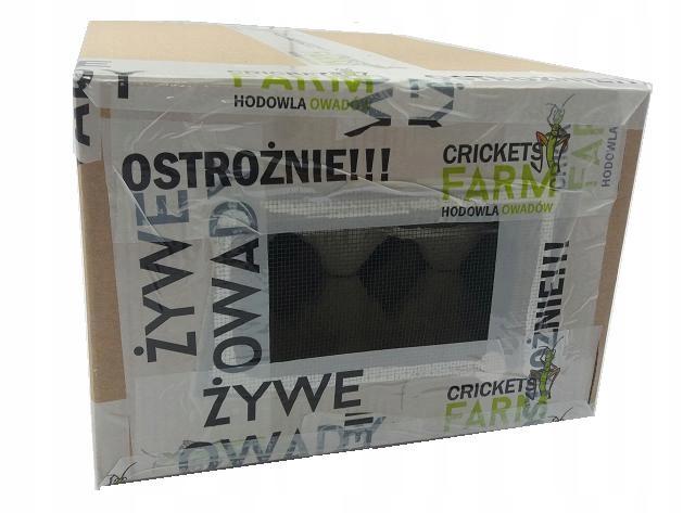 CVRČKY VEĽKÉ KUBÁNSKEJ - MEGAPACK 1 liter