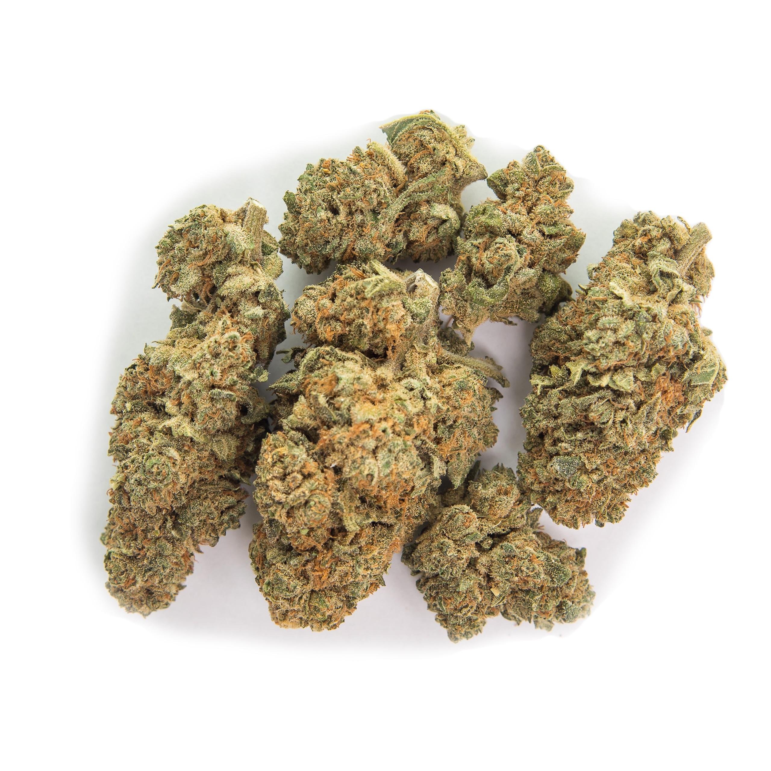 Продажа марихуаны оптом символ конопли значками