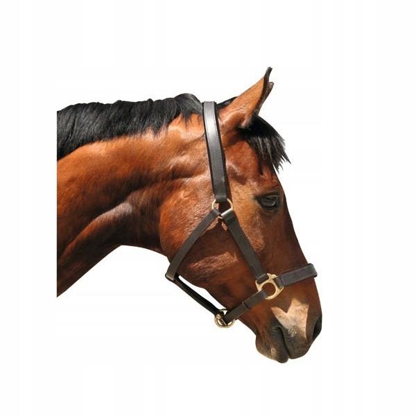 CANTAR Kožený Hnedý pre chladnokrvné kone