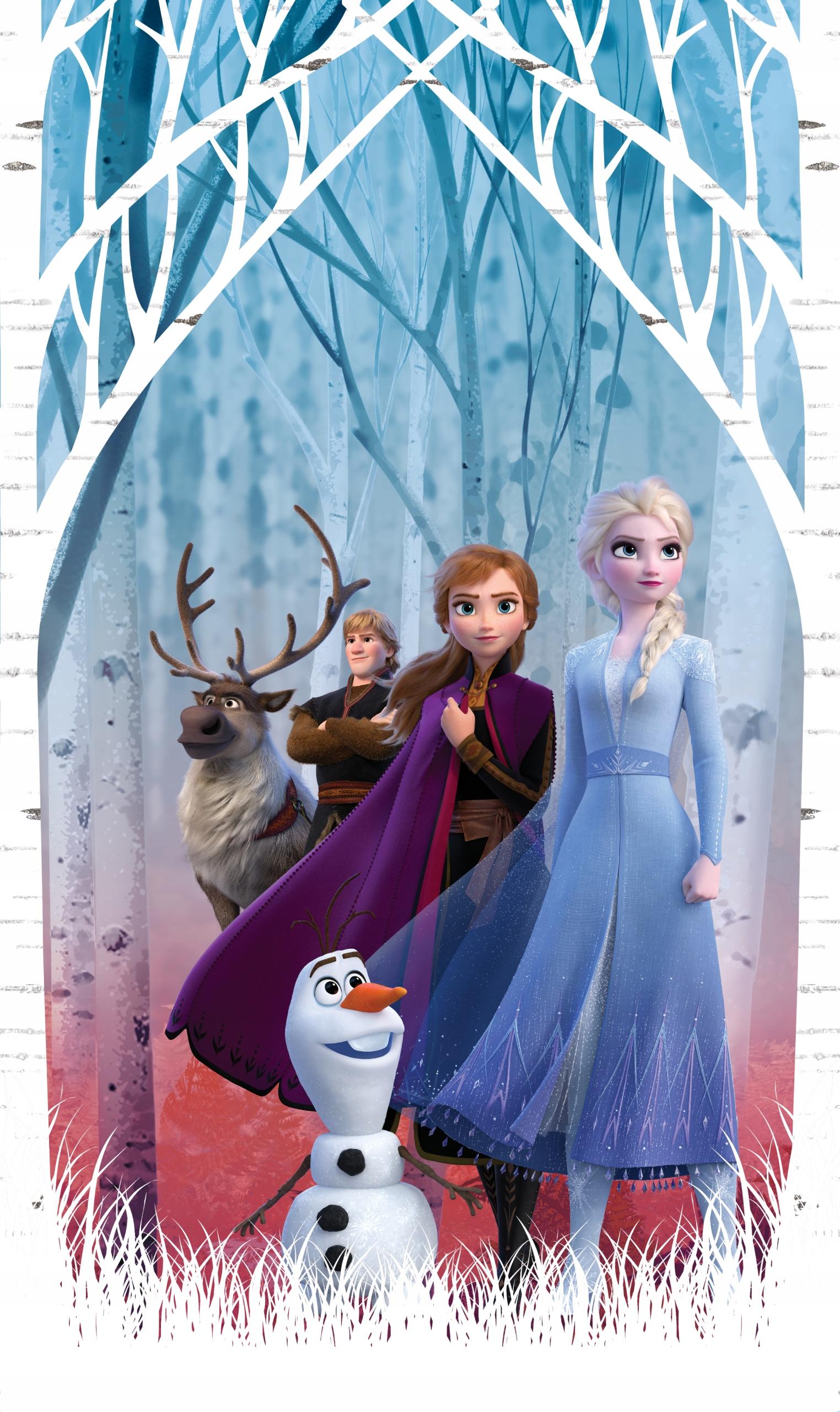 Záves Disney Frozen 2 - 140 x 245 - AG dizajn