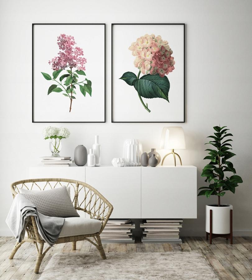 Plagáty vintage kvety, grafika nastaviť B2 50x70 cm
