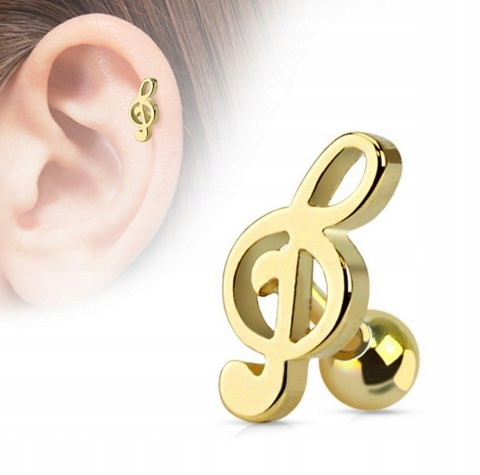 Item Earrings for cartilage GOLD treble clef 316L