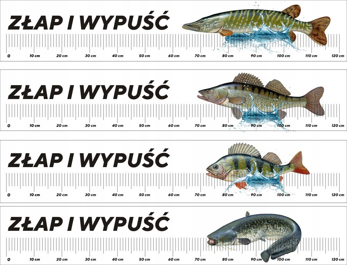 Zmerajte lopatku pre ryby na rybársky lodný nálepka