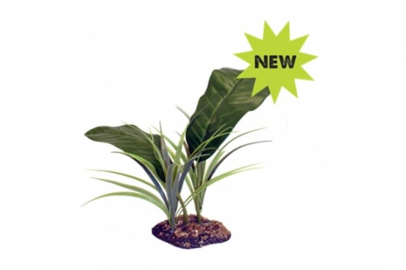 Komodo Evergreen Baldachýn 82541