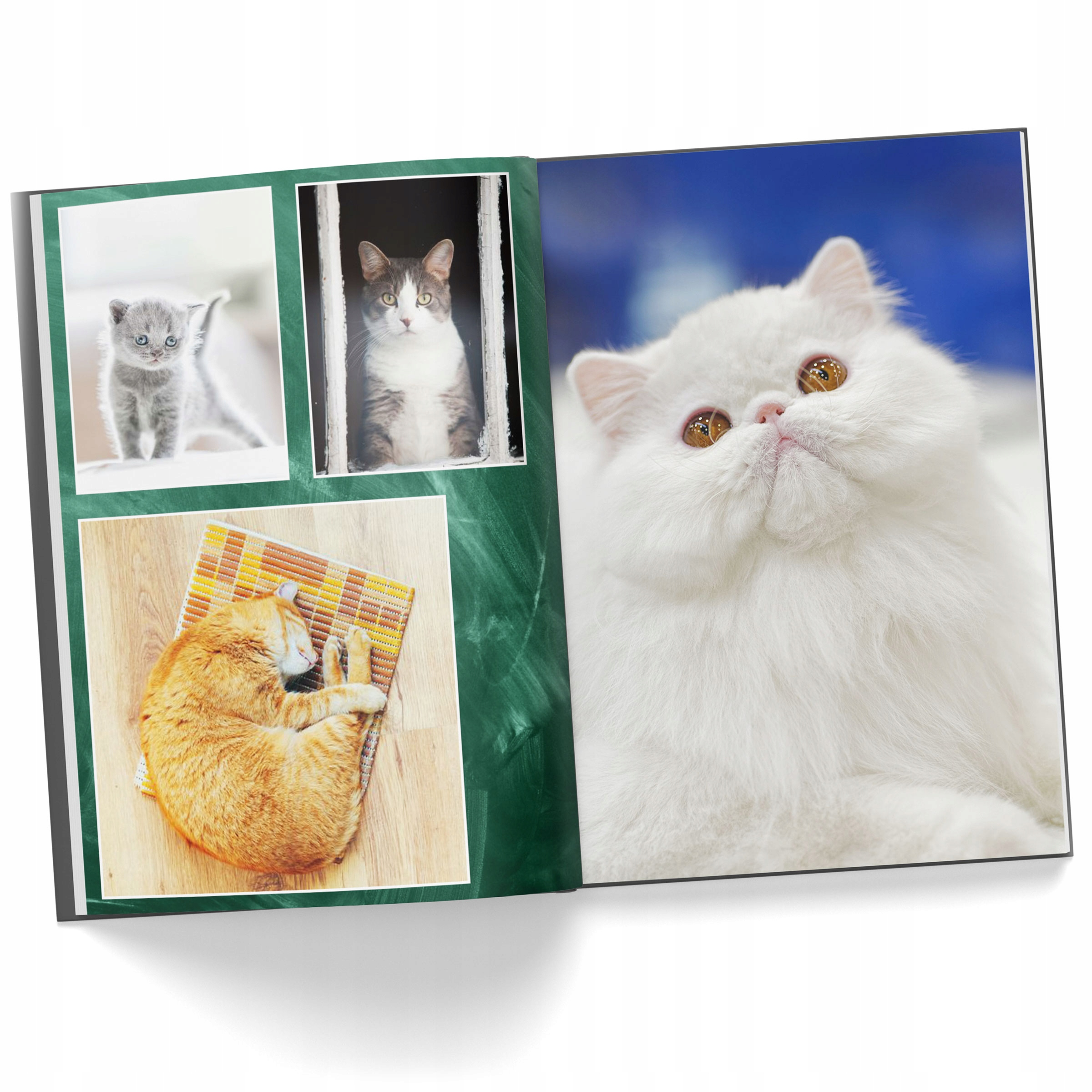 Item Photo book A4, vertical 60 pages photo album