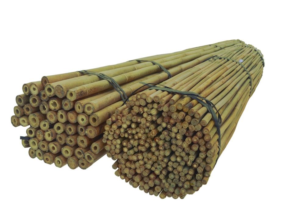BAMBUSOVÉ TYČE 150 cm 10/12 mm /250 Ks, bambus