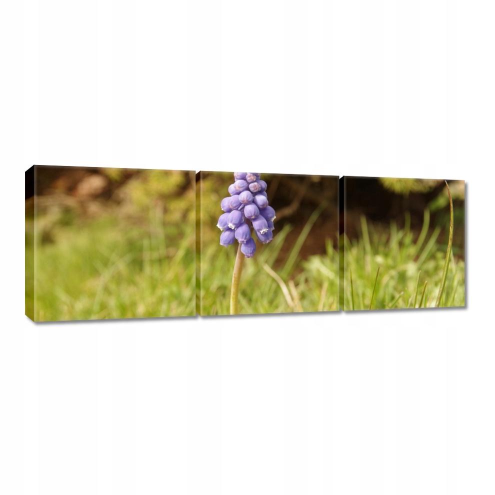 Obrazy na płótnie 60x20 Fioletowy kwiatek