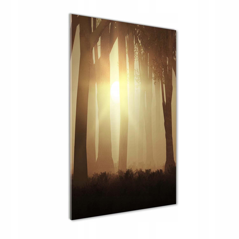 Foto obraz szkło hartowane Mgłą w lesie 70x140 cm