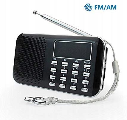 RADIO PRUNUS L218AM czarne FM/AM USB MICRO TF MP3