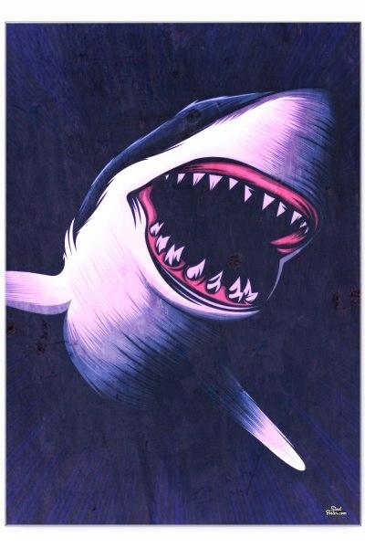 Blacha dekoracyjna / ozdobna Shark : Rozmiar: - S