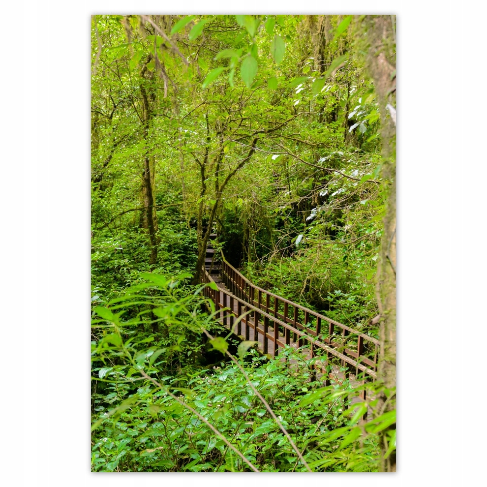 Plakaty 62x93 Park krajobrazowy Postery