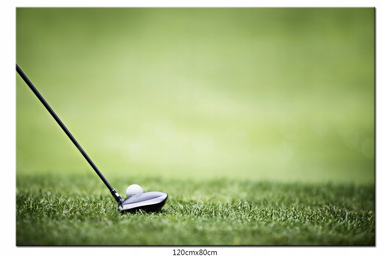 Obraz na Płótnie Sport Golf Golfowy Sportowy
