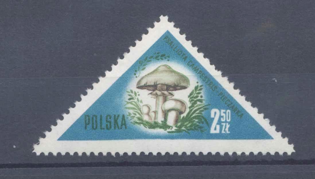 1959 PRL, Fi.953 MK, PRZESUNIĘCIE KOLORU **