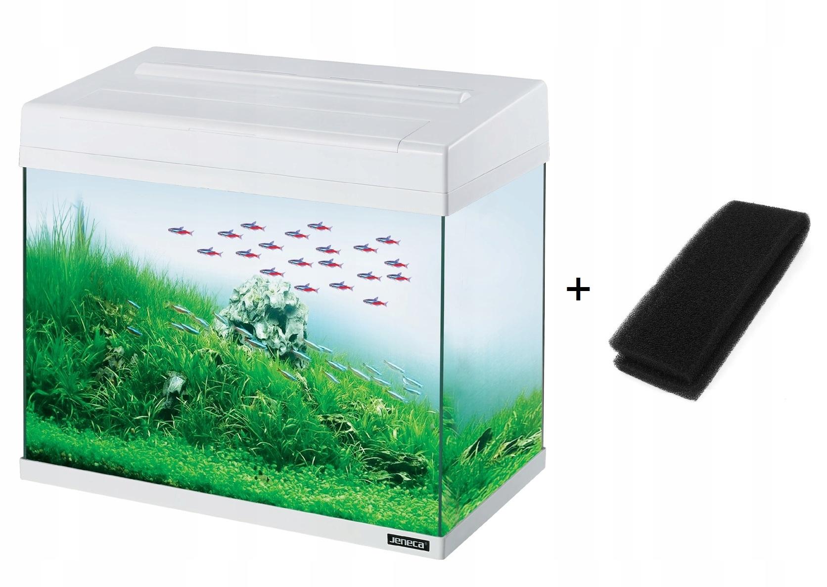 Akwarium Jeneca 24 l białe LED + Filtr w pokrywie