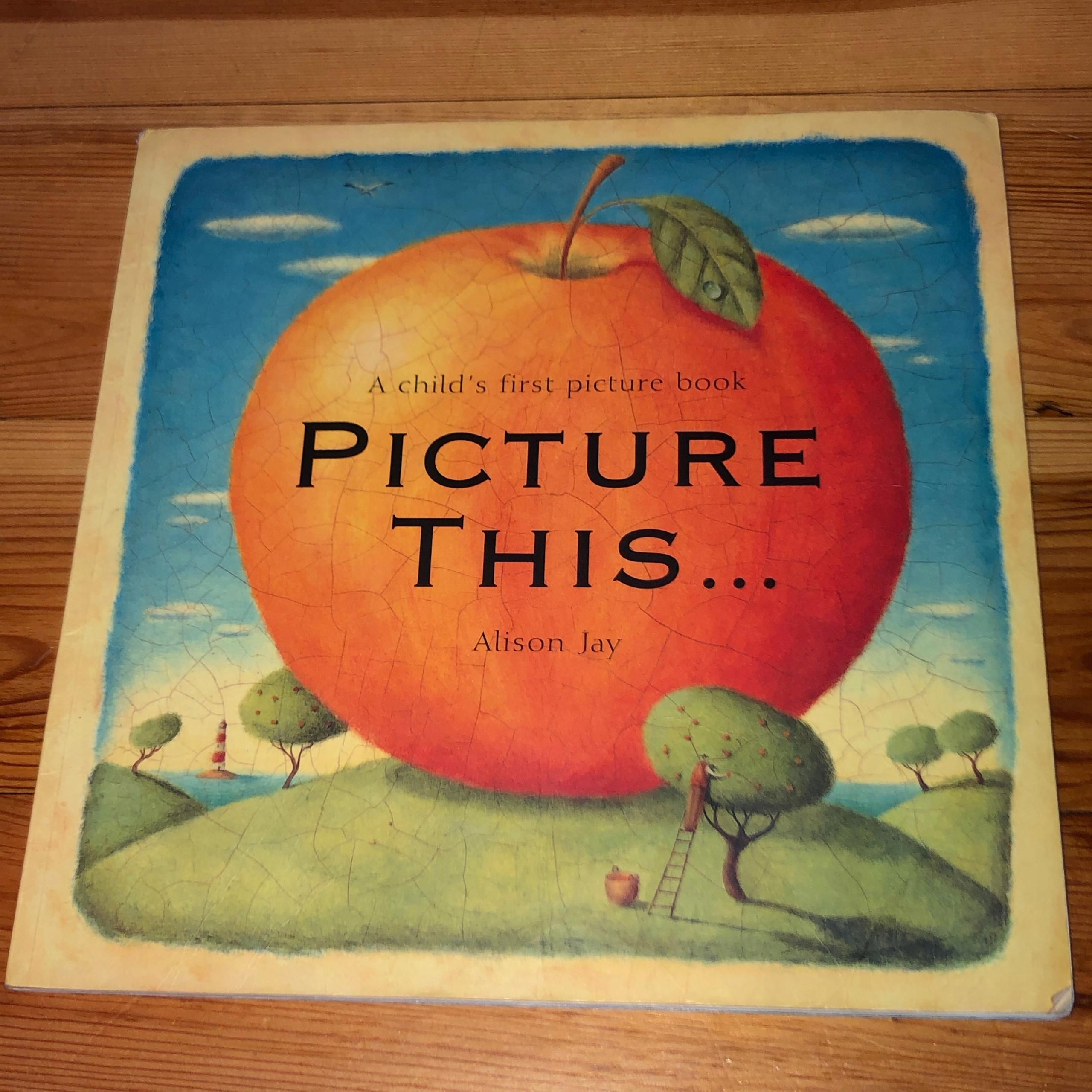 Książka angielska PICTURE THIS... Alison Jay