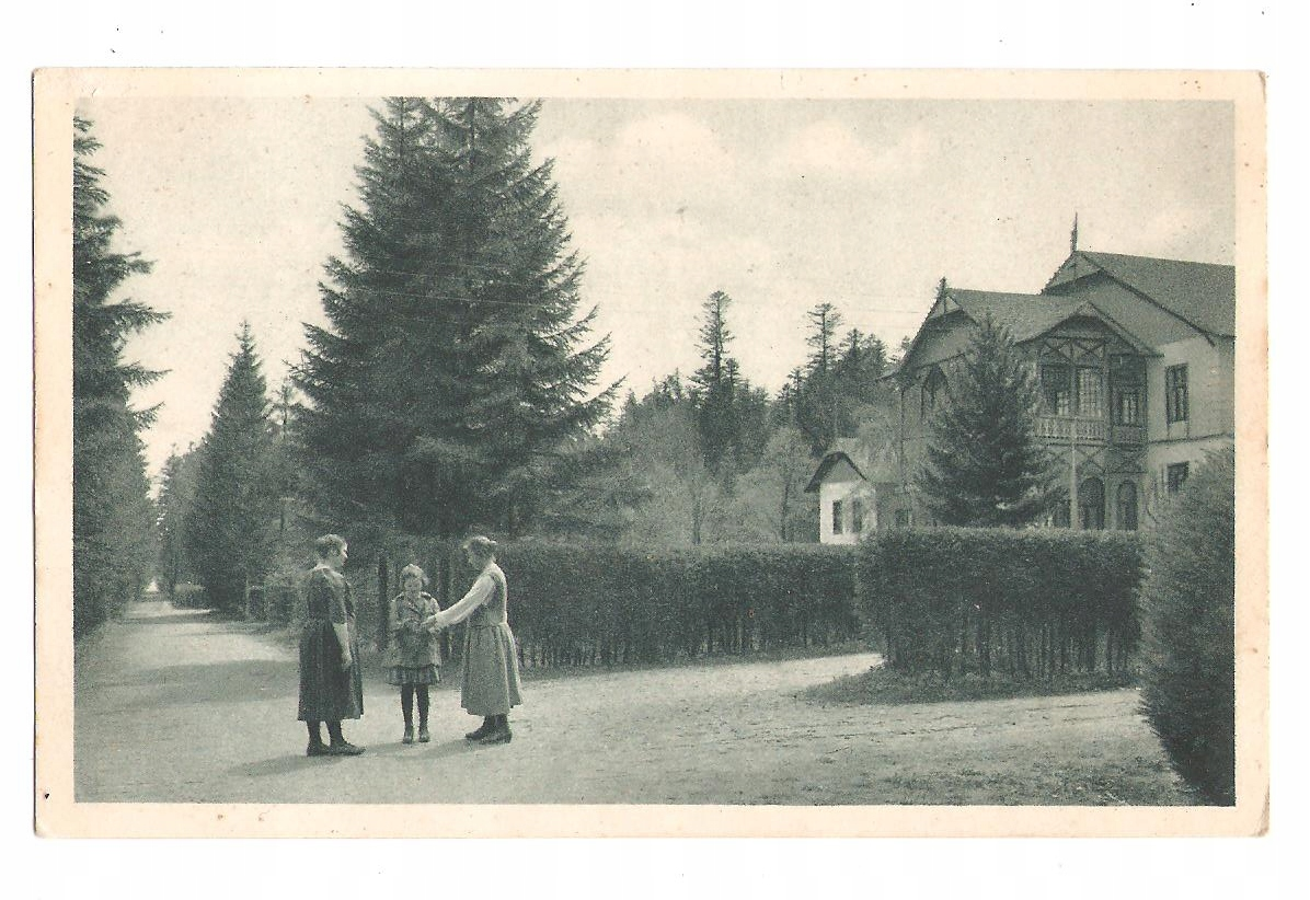 Vysoke Tatry v parku 1924 r fota A.Chytil