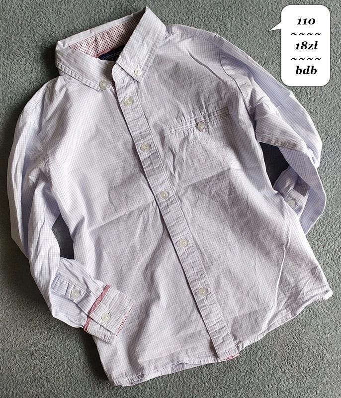 * Koszula Coocodrillo r.110