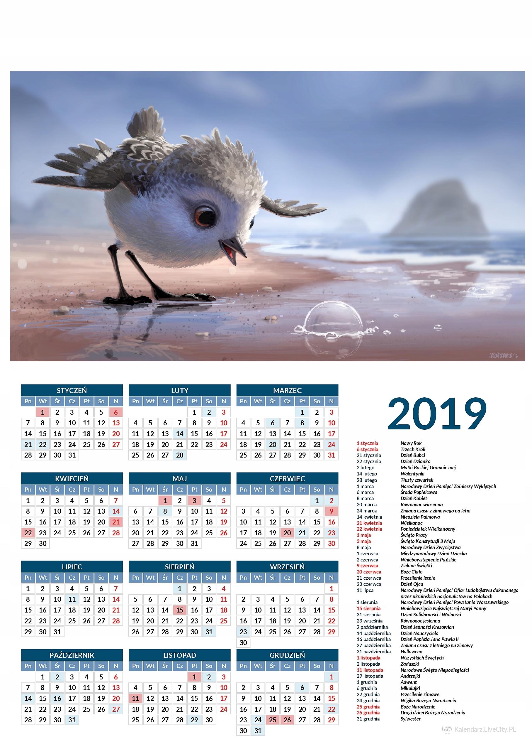 Kalendarz 2019 film Brodziec