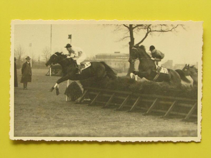 #32160, konie, wyścigi