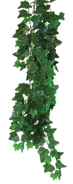 Happet Terra Plant Hedera helix 70 cm
