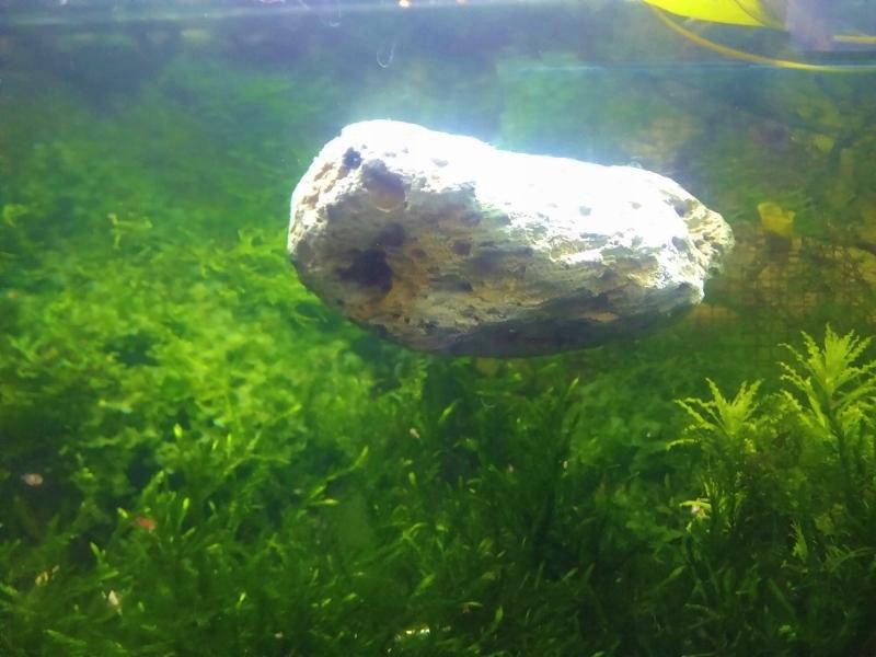 Pływająca SKAŁA XL. unosi się w toni wodnej. HIT !