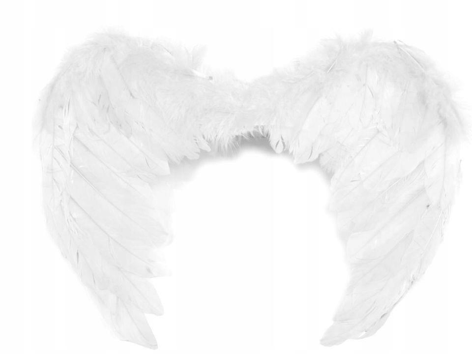 Anielskie skrzydła 35x45cm 12szt