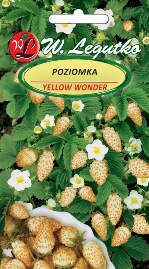 Poziomka Yellow Wonder 1G nasiona