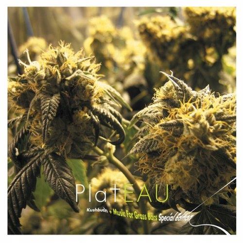 CD Plateau - Kushbush+Music.. -Spec- .. Grass Bars