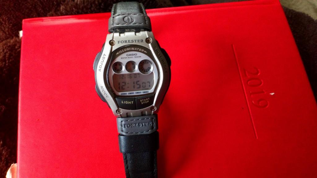 Zegarek męski sportowy Forester casio