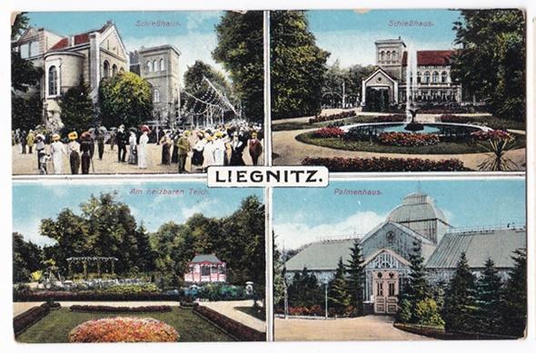 Legnica 4 widokowa 1915r