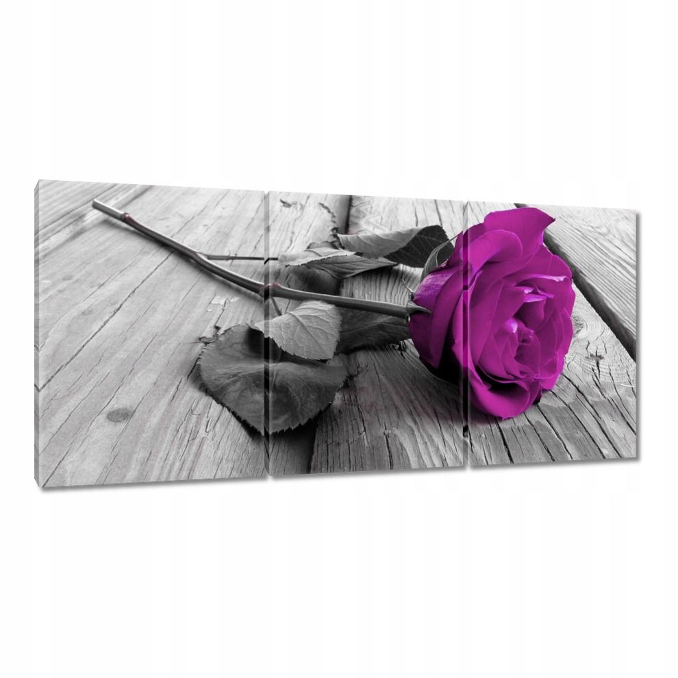 Obrazy na płótnie 210x100 Fioletowa róża