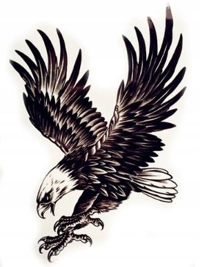 Tatuaż Tymczasowy Orzeł Tatoo Eagle 21 Cm X 145