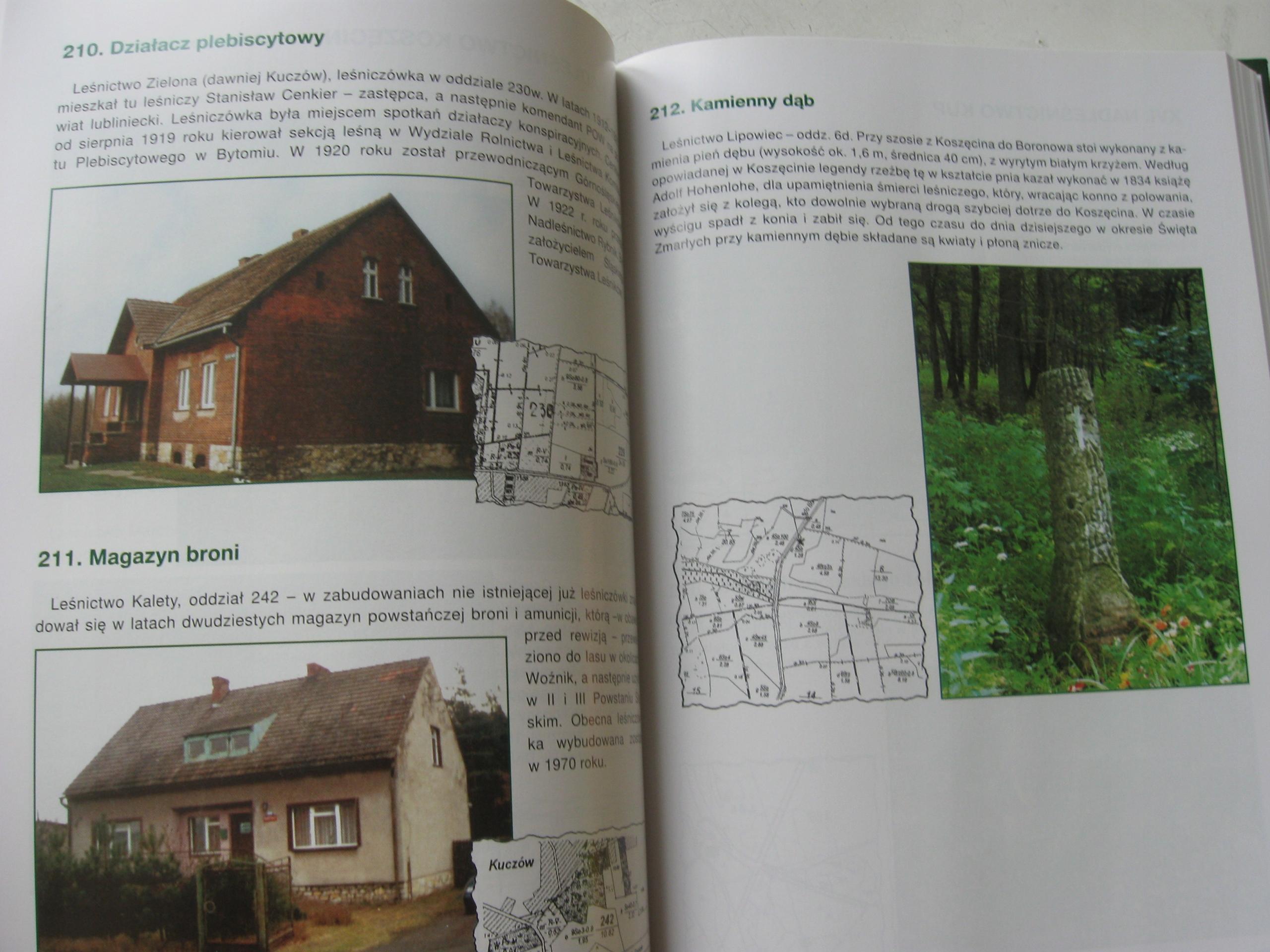 Historia Zapisana W Lesie Groby Forty Cywiński 7846265712