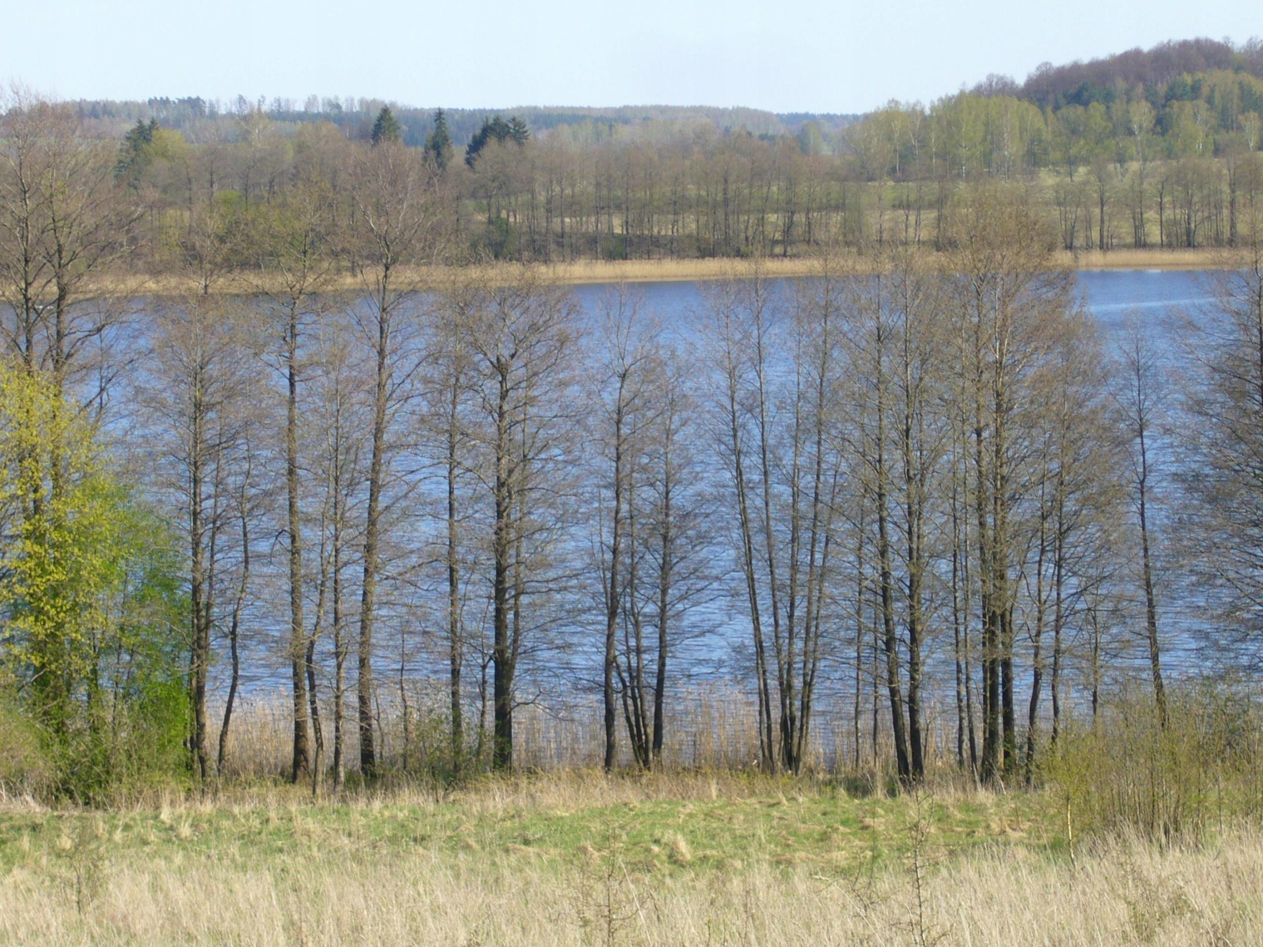 Działka nad jeziorem z linią brzegową