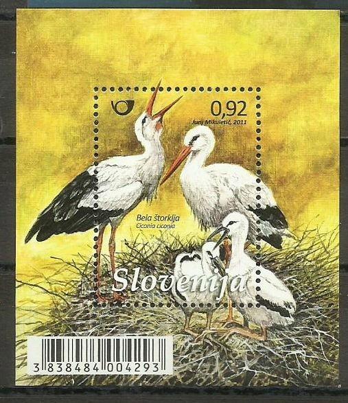 Słowenia 2011- Ptaki, Bociany **