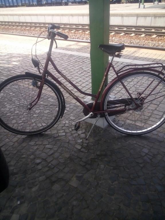 rower batavus monaco