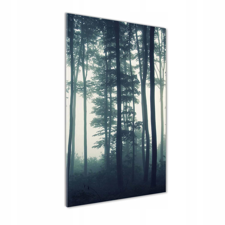 Foto obraz szkło hartowane Mgła w lesie 70x140 cm
